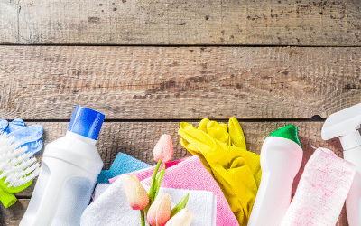 10 Step Guide to Green Spring Cleaning in 2020